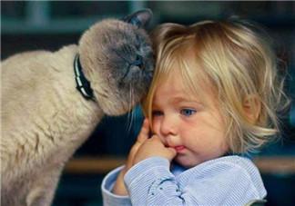 宝宝是熊孩子怎么办?如何教育孩子不要妨碍他人呢?