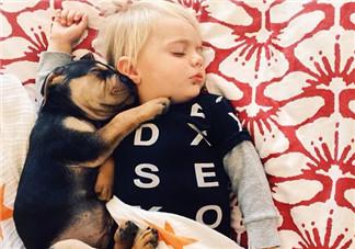 夏天宝宝要不要午睡 小孩夏天午睡好处(有助于幼儿语言发展)