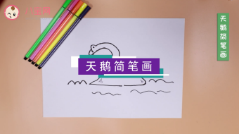 大天鹅简笔画视频   大天鹅简笔画步骤教程