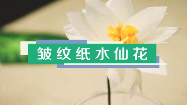 皱纹纸水仙花视频教程 皱纹纸水仙花制作方法